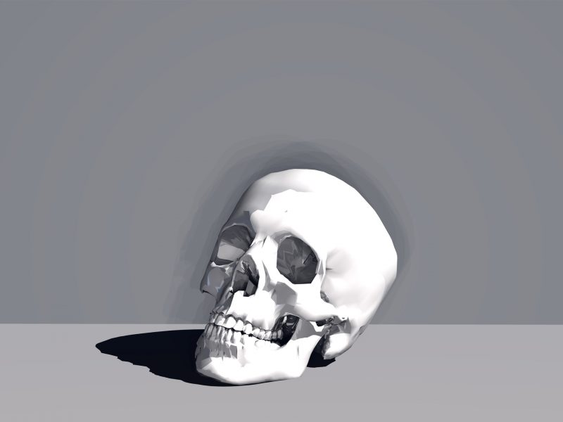 SKULL WHITE WALLPEPER